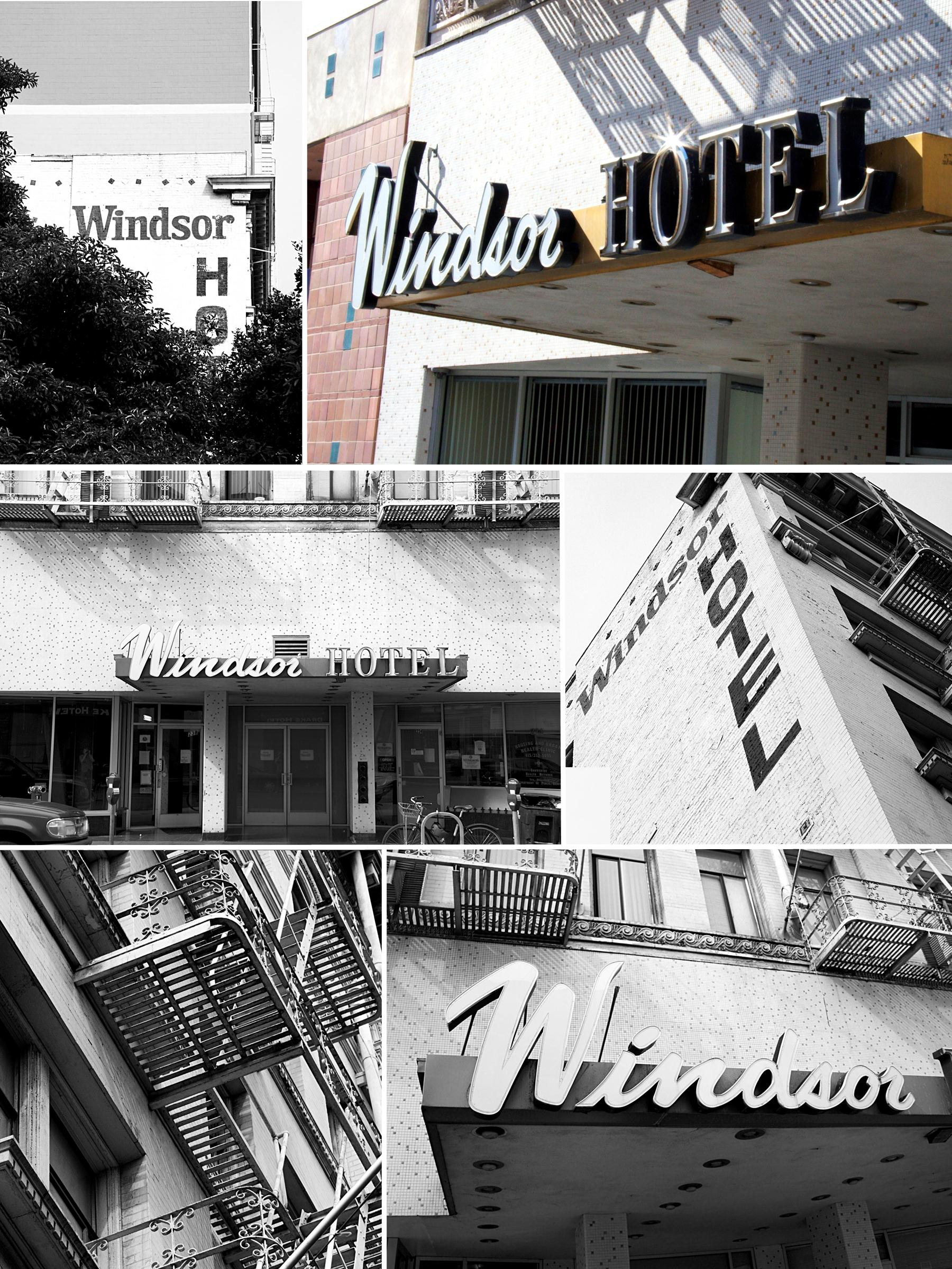 Windsor.Collage.1